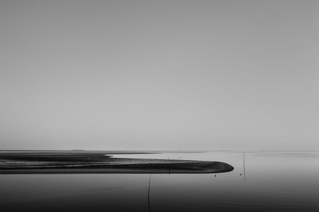 Horizon 6
