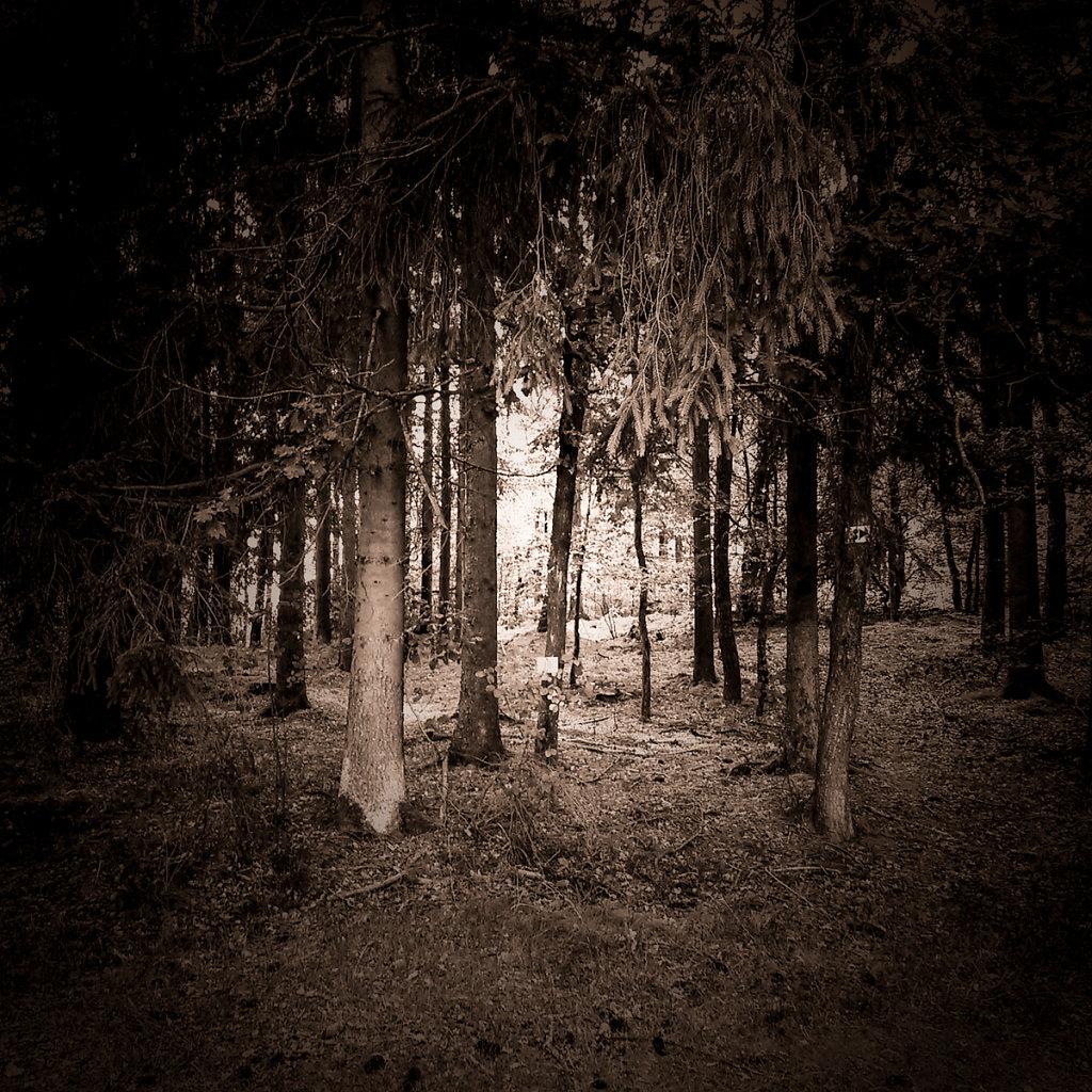"""""""Roter Berg"""", Bruno Fleutelot.2015 - Couverture non retenue 04"""